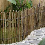 Eucalypt Rustic Fence
