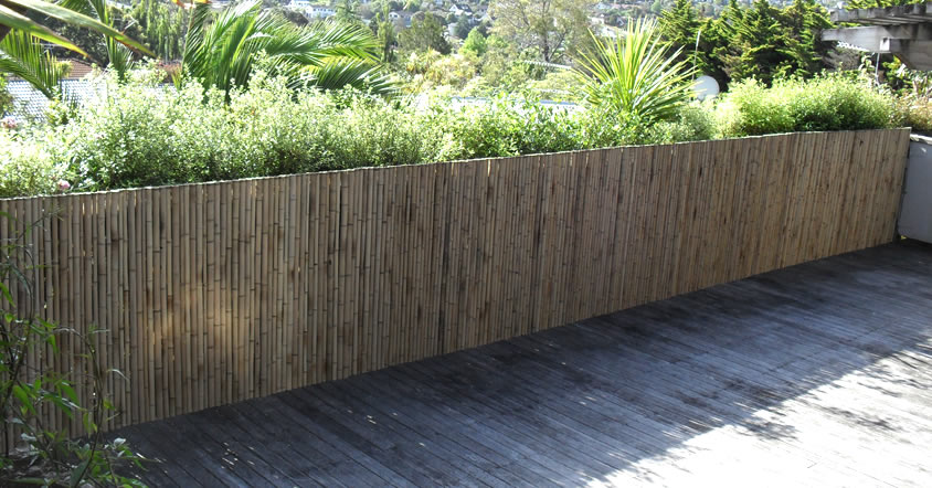 brustics new zealand bamboo fencing solutions auckland