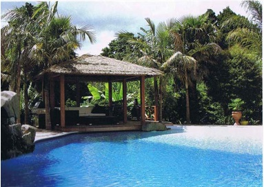 tropicla-style-natural-thatch