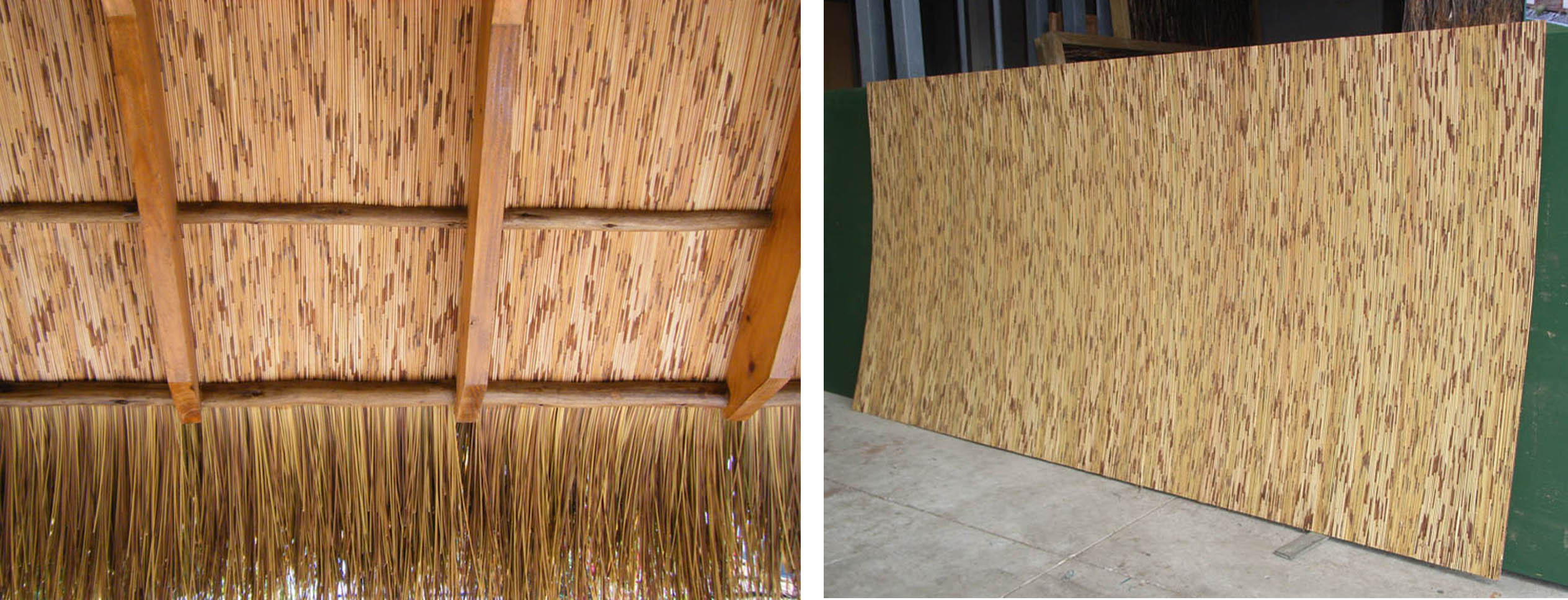 100 thatched roof materials bamboo eucalyptus pin by for Bamboo roofing materials
